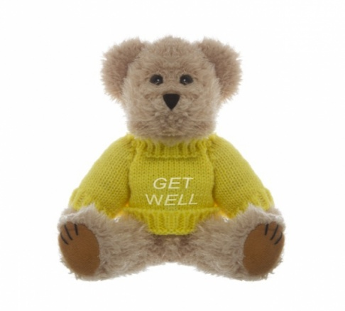Teddy Bear with 'Get Well' Message 20cm