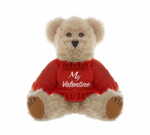Teddy Bear with 'My Valentine' Message 20cm