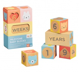 Baby Milestone Wooden Blocks