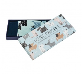 Sock Gift Box - You're Pawsome
